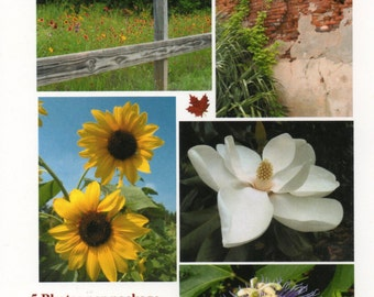 Folded Photo Note Cards, 5 per Set, Includes Shipping