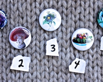 One Inch Plant // Flower // Fungus // Succulent Pinback Button