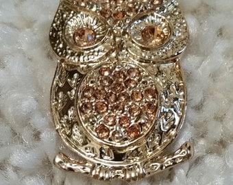 Owl Brooch Pin