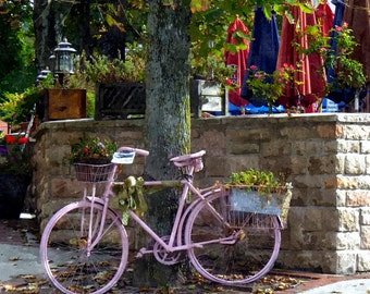 Pink Bicycle (at rest)
