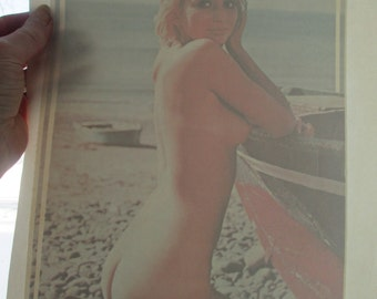 True vintage 1970s naked lady ? iron on decal..