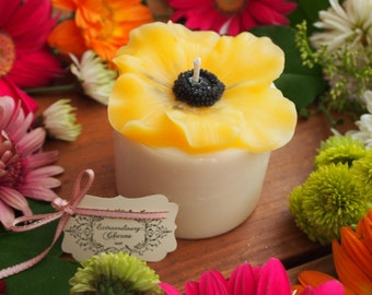 Anemone Candle  *Yellow*
