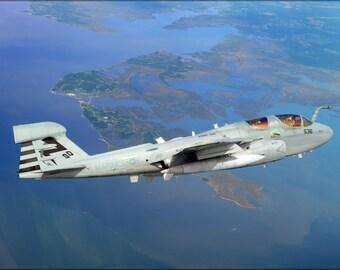 24x36 Poster; Ea-6B Prowler (#P10)