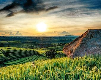 Landscape Fine Art Print, Bali, Jatiluwih Rice Terraces at dawn