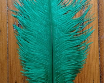 Emerald Ostrich Feathers