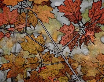 Fall Leaves, Fine Art Print, Wall Decor