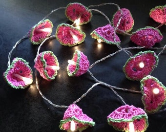 Watermelon themed battery powered LED fairy lights.