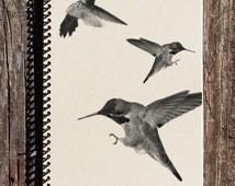 Hummingbird Journal - Hummingbird Notebook - Bird Lover