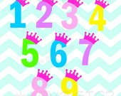 Birthday Princess Numbers SVG and studio files for Cricut, Silhouette, Vinyl Cutters and Screen Printing