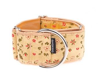 Martingale collar, greyhound collar, 2 inch, dog collar, gold collar,gold,yellow, martingale collars,martingale