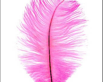 Ostrich feathers. Pack of 10 large neon pink craft feathers Code JR04783
