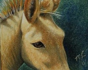 Donkey Miniature Art by Melody Lea Lamb ACEO Print #285
