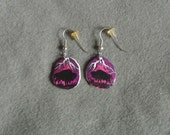 Antler Earrings Buffalo Dusk-Hand Painted