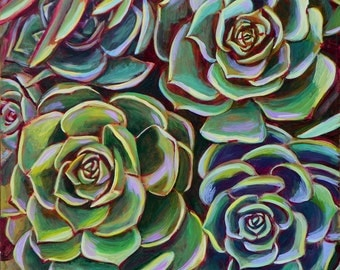 Four Succulents 24x24 inch Print on Stretched Canvas