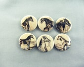 Six Sepia Horse Fridge Magnets, Pin, Wine Charms - Home & Living - Kitchen - Storage Organization - works with Magnabilities 1121 -  No. 2