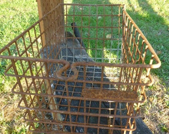 Wire  Basket 9X15 Rusty Locker PE Storage