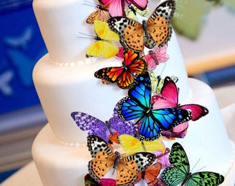 Edible Butterfly Wafer Cake Decorations ,cupcake toppers,cookie toppers,birthday,cake decoration