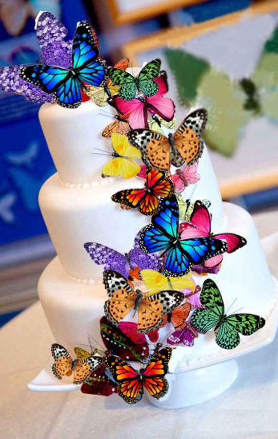 Edible Butterfly Wafer Cake Decorations by NaturallyGiftedNY
