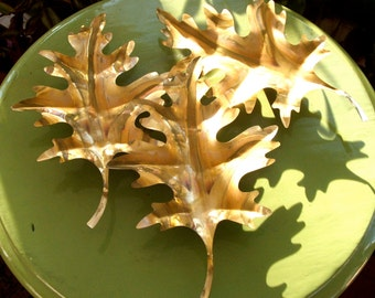 Set of 3 Vintage Metal Oak Leaves Wall Decor