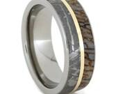 Titanium Band with Meteorite, Dinosaur Bone and 14K Yellow Gold Pinstripe Inlay