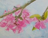Floral painting, Peach Blossoms, an original watercolor painting 11x14 by Texas artist Nan Henke