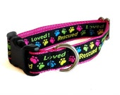 Rescued Pink Small Dog Collar - Martingale, Leash, Harness, Collar