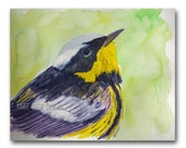 Warbler Bird Watercolor Painting 9x12 fine art original contemporary songbird in spring yellow green backyard bird colorful wall art