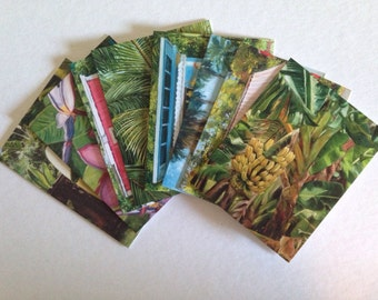 Hawaii Oahu tropical note cards 8 different images with envelopes