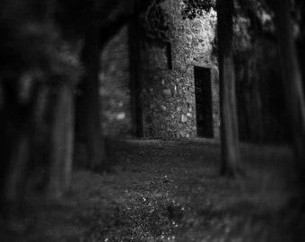Through the Woods Fine Art Photography Black and White Magical Mystery Scary Italian woods Stone wall dark doorway fairytale Large wall art