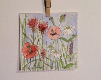 Art Red Poppies Watercolor Illustration Wildflowers Garden Flowers Botanical Nature