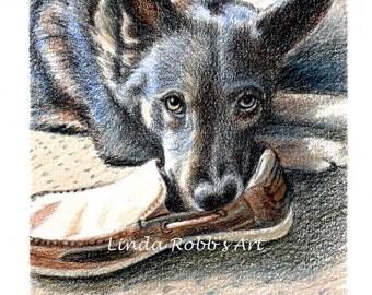 Custom Dog Pet Portrait Colored Pencil 5x7