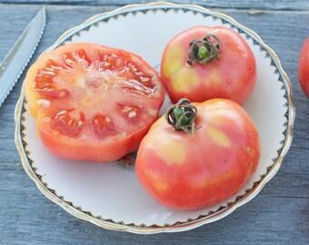 Coburg Canadian Heirloom Tomato Seeds