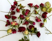Dry Rosebuds, Red Roses, Dried Roses, Miniature, Wedding Decoration, Roses, Craft Supplies, Floral, Dried Flower, Confetti,  25 Rosebuds