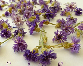 Dried Cornflowers, Lavender, Cornflowers, Bachelor Buttons, Real Flowers, Edible, Flowers, Decorations, Soap Supplies, Dry Flowers. Edible