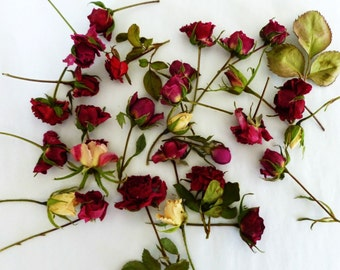 Dry Rosebuds, Red, Ivory, Pink, Roses, Dried Roses, Miniature, Wedding Decoration, Roses, Craft Supplies, Floral, Confetti,  12 Rosebuds