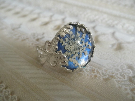 Peace-Victorian Filigree Pressed Flower Ring Beneath Glass with Queen Anne's Lace Atop Glowing Royal Blue Background, Symbolizes Peace