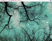 BLACK Friday, Celestial Print, Teal, Gray, Nature Photography, Moon, Stars, Nursery Decor, Large Wall Art
