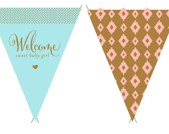 Welcome Sweet Baby Girl Banner