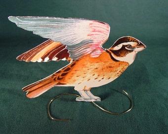 Rose Winged Grossbeak Paper Sculpture