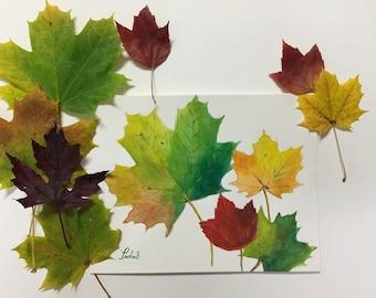 Original Watercolor Painting - Fall Leaves, Autumn, Nature art, Wall Decor