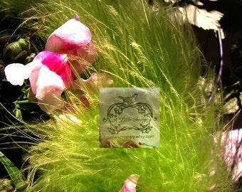 Pea Moss Green Marabou Boa Feathers