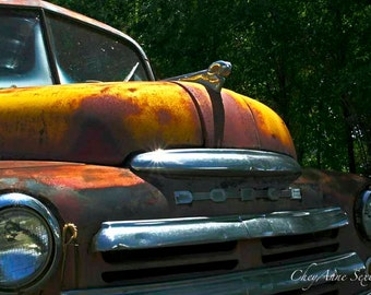 Old Dodge Taos Truck - Vintage Farm Truck - Front Bumper Grill - Fine Art Giclee Print size choices