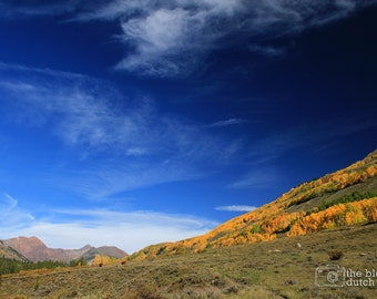Sapphire Blue Skies & Golden Aspen Trees - Crested Butte, Colorado (photograph, various sizes)