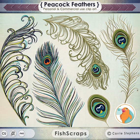 Peacock Feather ClipArt, Feather Illustration, DIY Invitation Graphic Design, Boho Peacock Wedding Clip Art, Commercial Use Image