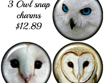3 Owl Snap Charms that are Interchangeable with Noosa or Gingersnap style Jewelry and other popular snap jewelry.