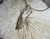 Sweet Heart- This Spiral Seed Pendulum/Pendant features a piece of polished Petrified Wood that is set in Silver.