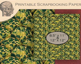 Printable Digital Scrapbooking Paper Graphics Antique Fish Scale Green Yellow Marbled Paper Scalloped Background Instant Download