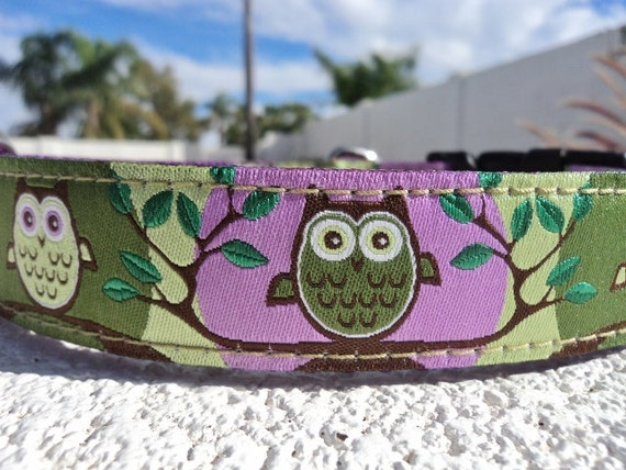 "Small Dog Collar Tree Owls Green 3/4"" wide side release buckle / see 1"" listing within / martingale style is cost upgrade"