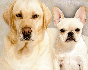 Custom Dog Portrait/Yellow Lab French Bulldog/10 x 12/Two Dog Portrait/Pet Portrait