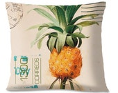 PINEAPPLE VINTAGE POSTCARD Pillow - Mexican Southwest  -  Linen backing - Insert Included - Travel Pillow - Southwest Throw Pillow